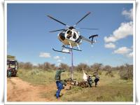 images/template/heli/Bushveldgamecapture_helicopterErindi_Auction_capture_2_088-011.jpg